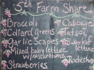 5th farm share