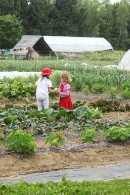 2 Girls harvesting
