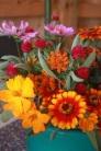 fall farm flowers