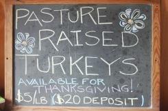 get your turkeys!