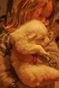 maeve and her mini polar bear