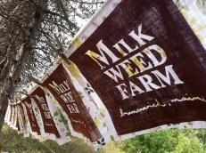 Farm flag