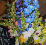 Delphineum and Snapdragons