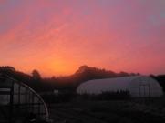 Autumn sunset